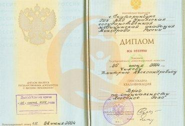 Диплом о высшем образовании по специализации «Лечебное дело», 2004 г.